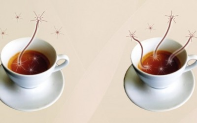 coffee_entanglement_web-660x332